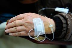 Kapinos w pacjent ręce Zdjęcia Royalty Free