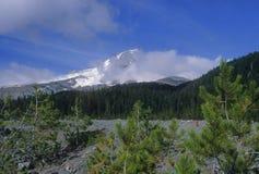 kapiszonu góry widok zdjęcie stock