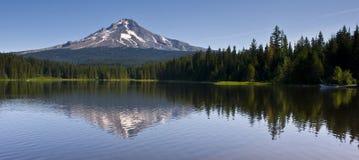 kapiszonu jeziorny góry trillium Zdjęcia Royalty Free