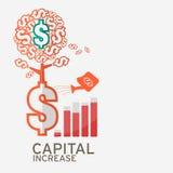 Kapitaalverhogingpictogram voor website Royalty-vrije Stock Afbeeldingen