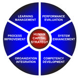 Kapital-Strategien-Geschäfts-Diagramm Lizenzfreie Stockfotos