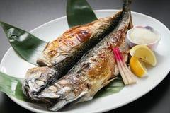 Kapitel av festivalen för Rokkai den bästa stekte makrillkokkonst på vit Royaltyfri Foto
