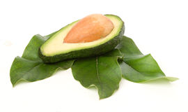 Kapitel der Avocado auf Blättern Lizenzfreies Stockfoto
