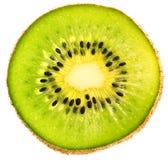 Kapitel der Kiwi getrennt Lizenzfreie Stockfotografie