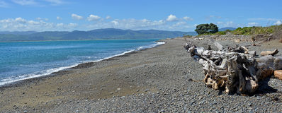 Kapiti-Insel-Vogelschutzgebiet-Strand-Panorama, Neuseeland Lizenzfreie Stockfotografie