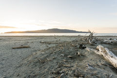 Kapiti Island Royalty Free Stock Photography