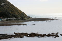 Kapiti Island, Wellington, New Zealand. Royalty Free Stock Photo