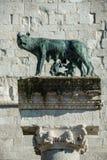Kapitoliński wilk w Rome, Włochy fotografia stock
