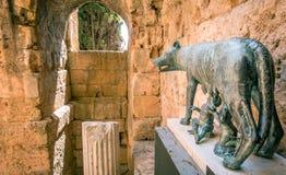 Kapitoliński wilk w antycznym Tarraco Tarragona, Hiszpania Zdjęcia Stock