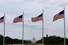 Kapitolium som bygger USA Arkivfoton