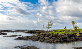 Kapoho Tide Pools Hawaii Stock Photography