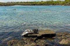 Kapoho Tide Pools Royalty Free Stock Photo