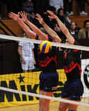 Kaposvar - Bled volleyball game Royalty Free Stock Images