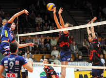 Kaposvar - Bled volleyball game Stock Image