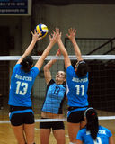 Kaposvar - BSE volleyball game Royalty Free Stock Photos