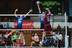 Kaposvar - Dunaferr volleyball game Stock Photos