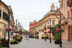 Kaposvar, Hongarije stock foto's