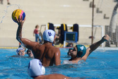 Kaposvar - Honved waterpolo game royalty free stock photo