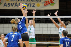 Kaposvar - Miskolc volleyball game Stock Image