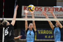 Kaposvar - Miskolc volleyball game Royalty Free Stock Photo