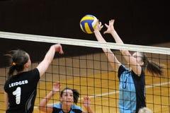 Kaposvar - Miskolc Volleyballspiel Stockfotografie