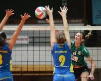 Kaposvar - Miskolc Volleyballspiel Stockfotos