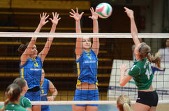 Kaposvar - Miskolc vollleyball game Royalty Free Stock Image