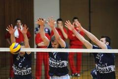 Kaposvar - Mladost Zagreb Volleyballspiel Lizenzfreie Stockfotos