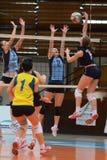 Kaposvar - Palota volleyball game Stock Photo
