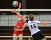 Kaposvar - TFSE volleyball game Royalty Free Stock Image