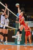 Kaposvar - TFSE volleyballspel Stock Afbeeldingen
