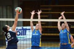 Kaposvar - Ujbuda Volleybalabgleichung Lizenzfreie Stockfotografie