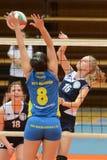 Kaposvar - Ujbuda Volleybalabgleichung Stockbilder