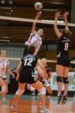 Kaposvar - Veszprem女子排球比赛 库存图片