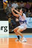 kaposvar volleyboll för modiga hotvolleys Royaltyfria Bilder