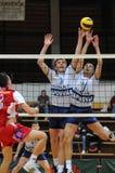 Kaposvar - Wien Volleyballspiel Lizenzfreie Stockbilder