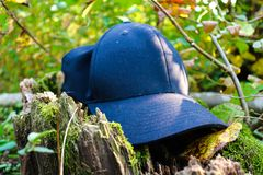 Kappe im Wald! stockbild
