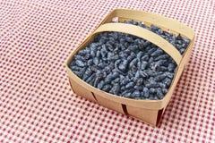 Kaprifolbärfrukter i en wood korg Royaltyfri Foto