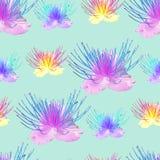 kapris Sömlös modelltextur av blommor blom- bakgrund Fotografering för Bildbyråer