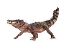 Kaprosuchus, δεινόσαυρος στο άσπρο υπόβαθρο στοκ φωτογραφίες με δικαίωμα ελεύθερης χρήσης