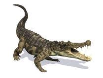 Kaprosuchus Immagini Stock