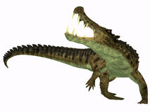Kaprosuchus su bianco Fotografia Stock
