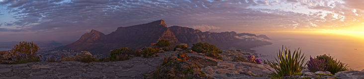 Kapstadt-Tabellen-Berg vom Kopf des Löwes Stockbild
