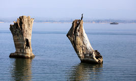 Kaptai lake in Bangladesh Royalty Free Stock Photography
