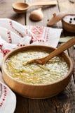 Kapusniak ukrainien de soupe à choucroute Photographie stock libre de droits