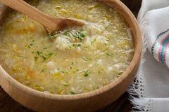 Kapusniak ukrainien de soupe à choucroute Image libre de droits