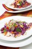 Kapusta, marchewka I Jabłczana sałatka, obraz stock