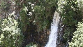 Kapuzbashi fällt in die Türkei im Sommer stock footage