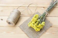 Karłowaty everlast kwitnie bukieta, pieluchy i dratwy bobinę na lekkim drewnianym stole, Obraz Stock