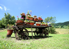 kar met vele potten van bloemen wordt verfraaid die Royalty-vrije Stock Foto's